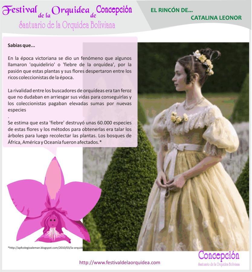 catalina16