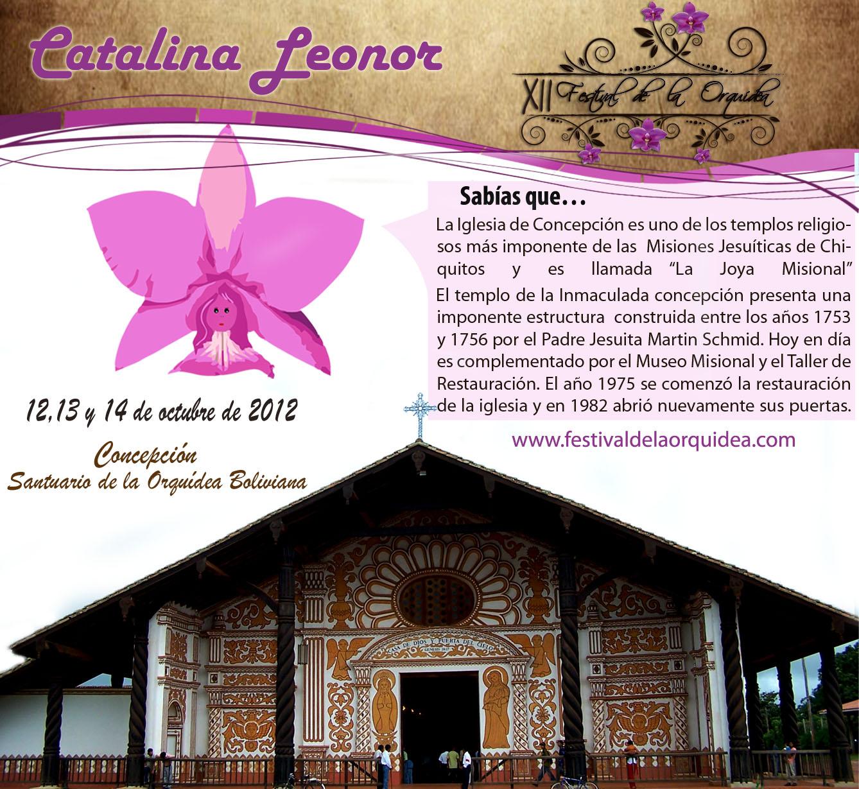 catalina19