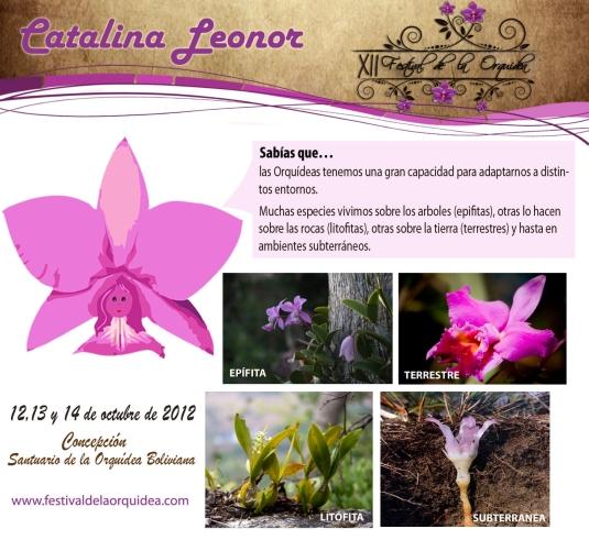 catalina21
