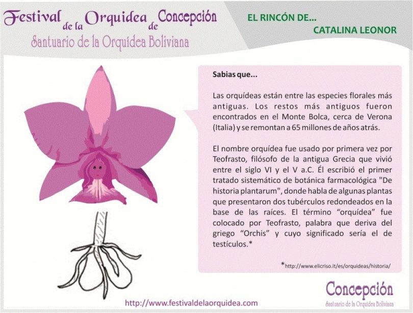 catalina5