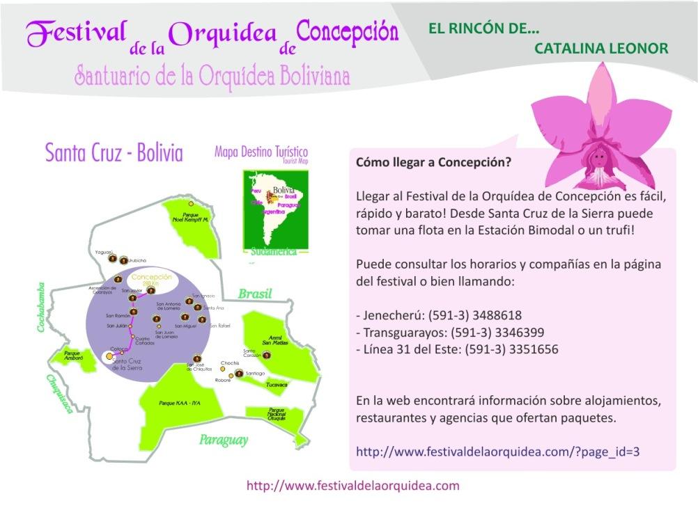 catalina6