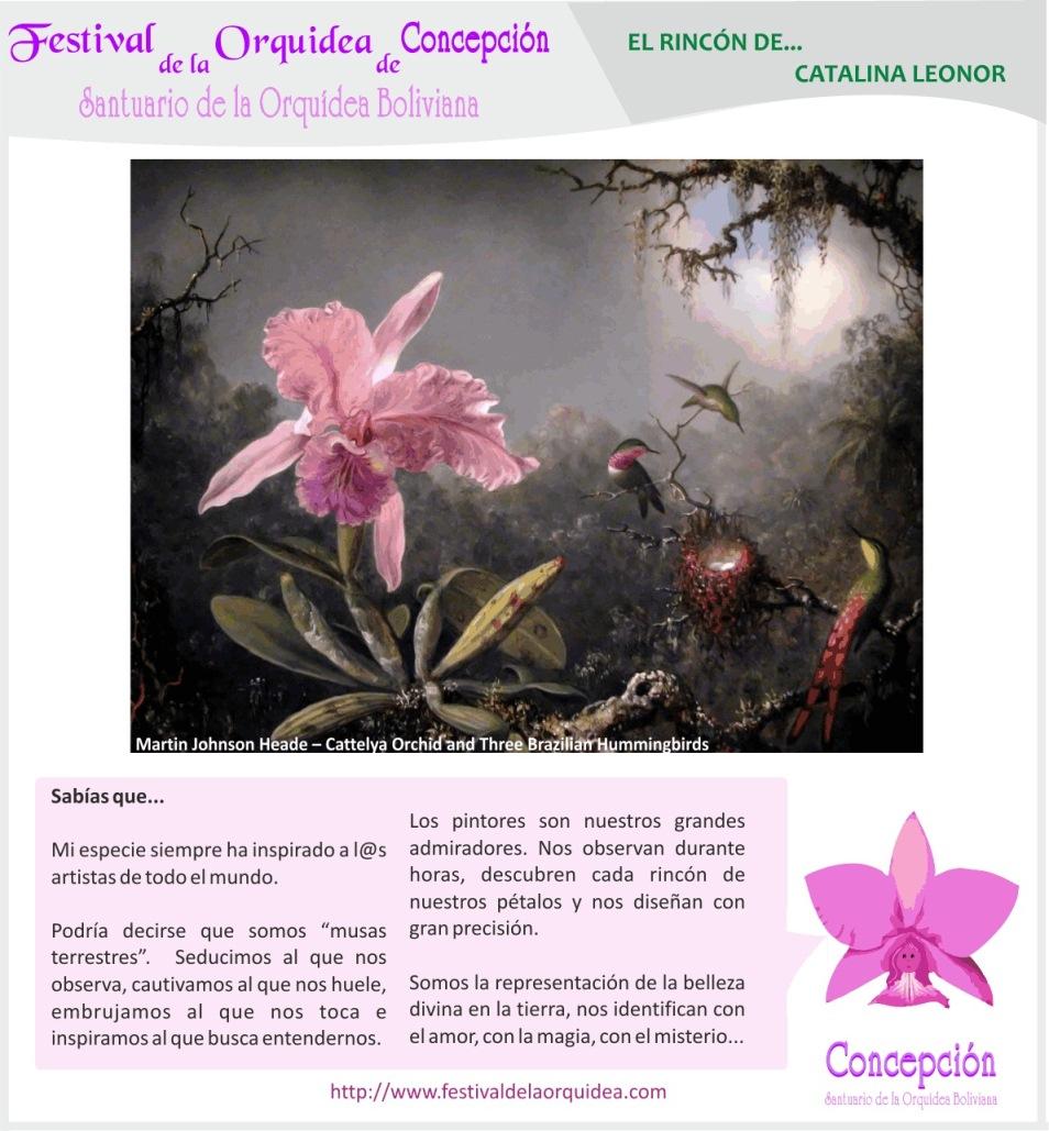 catalina9