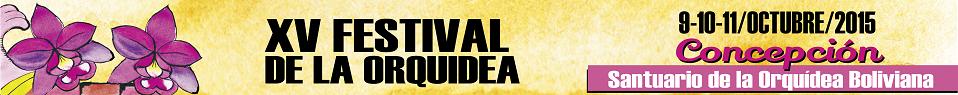 Festival De La Orquidea